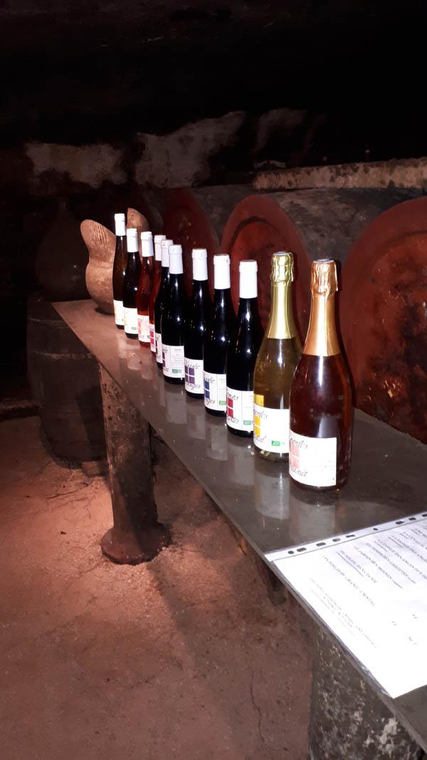 gamme vins degustation palais
