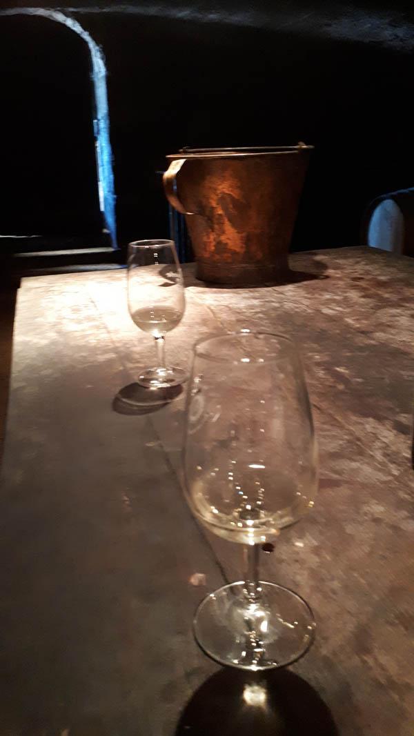 verre vin blanc degustation